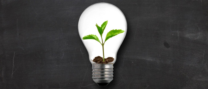 Article-Lightbulb