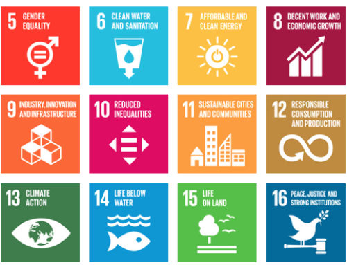 What do the UN Sustainable Development Goals have to do with you?